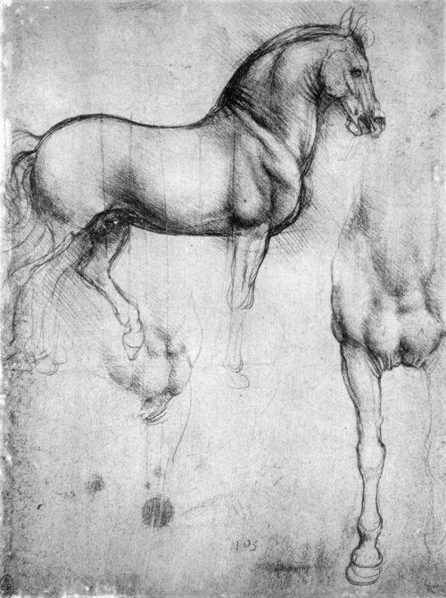 Leonardo da Vinci: Studie av hästar.