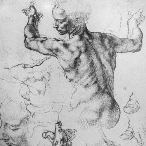 Leonardo da Vinci: Ryggstudie