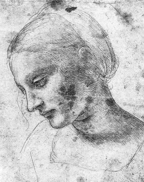 Leonardo da Vinci: Kvinnostudie